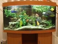 08_Aquarium im EG